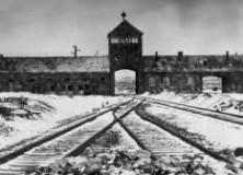 71e anniversaire de la Libération des camps