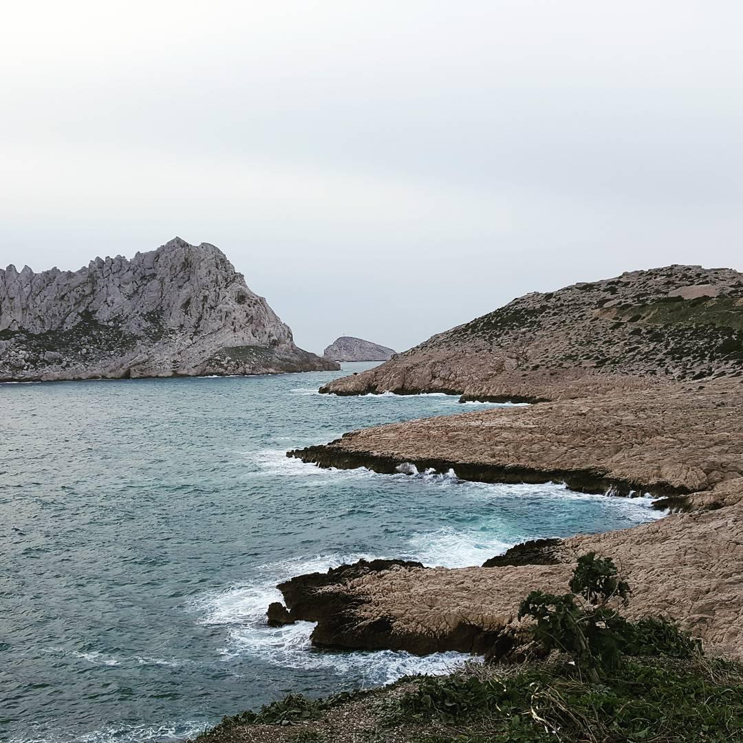 Plante Marseille Calanques mer