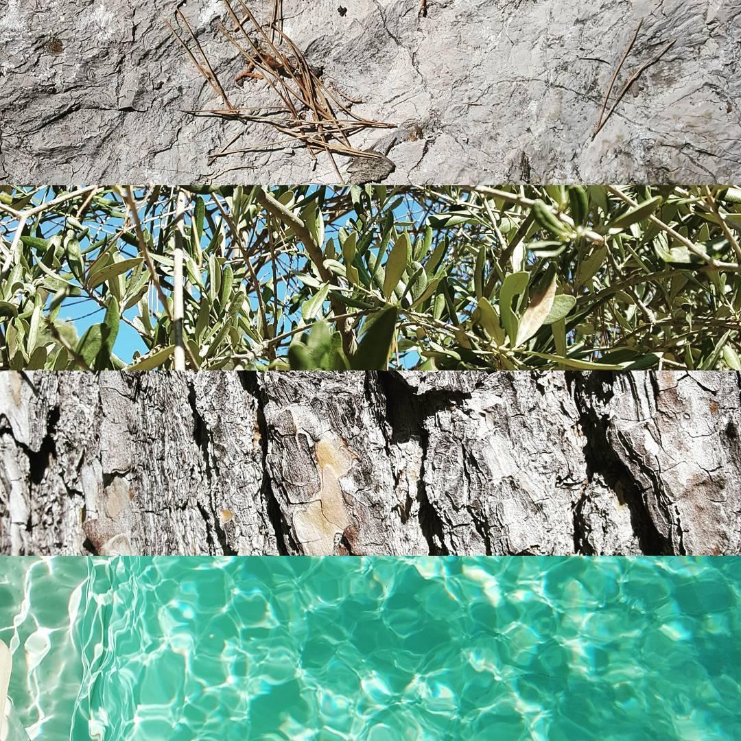 Provence sud t
